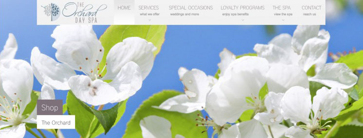 The Orchard Day Spa